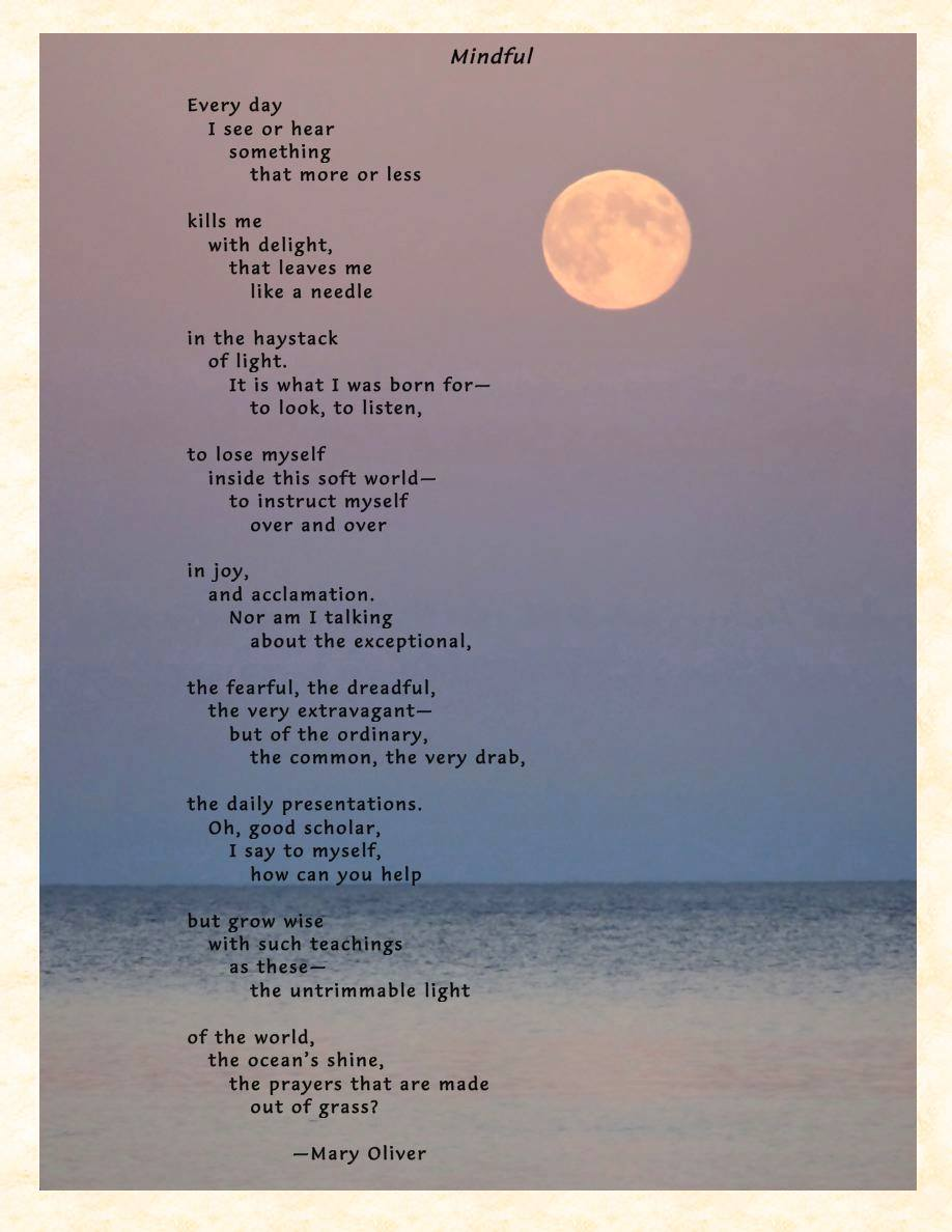 Mary Oliver Love Quotes Episcopal Diocese Of West Virginia